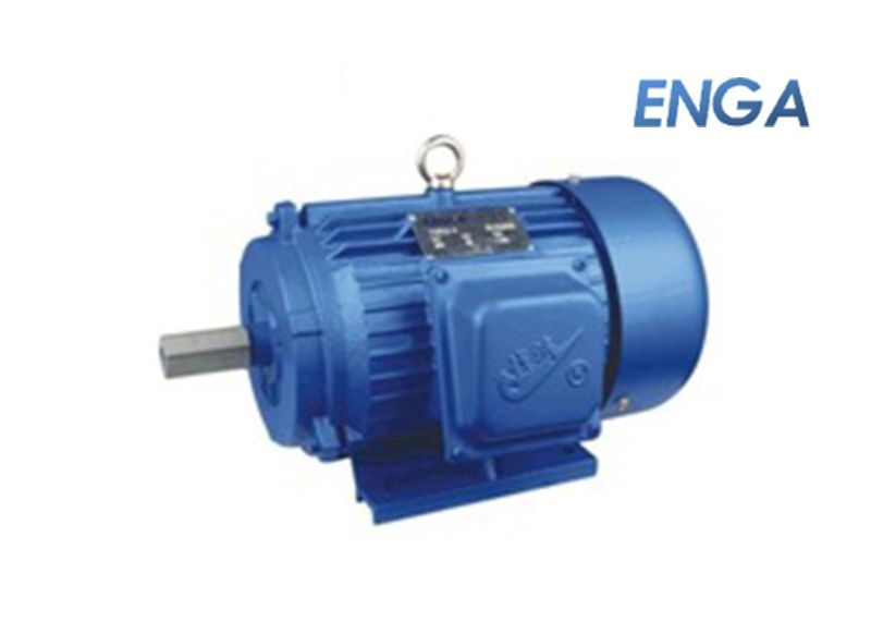 Y Series (Three Phase Squirrel Cage Induction Motor)